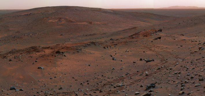 Le olive su Marte cadono all'insù?