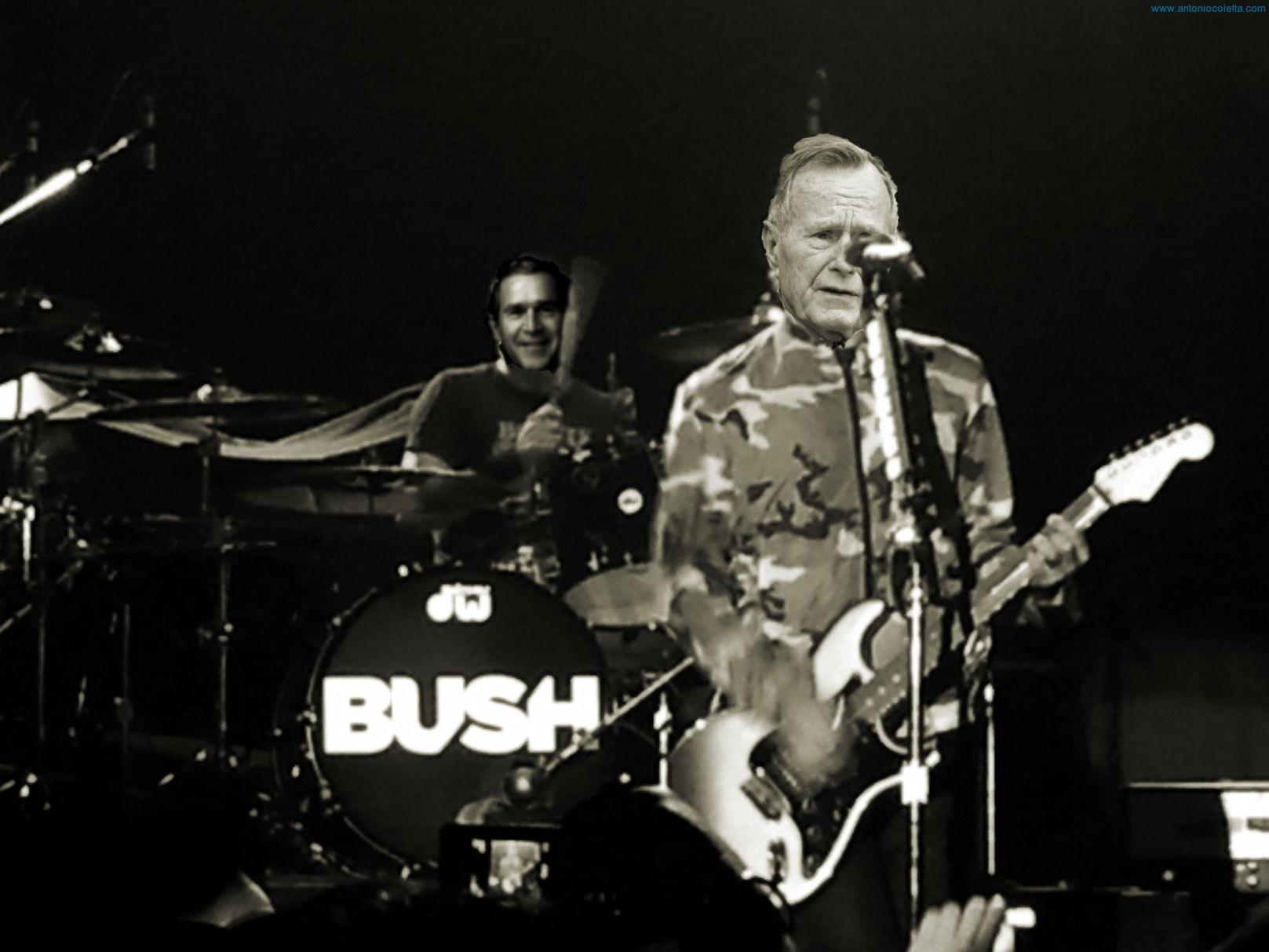 I Bush in concerto